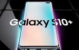 Galaxy S10 gặp lỗi kết nối tới nhà mạng
