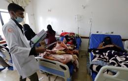 UNICEF cảnh báo về việc gia tăng số người mắc bệnh tả ở Yemen
