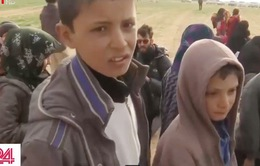 Những đứa trẻ trốn khỏi nơi trú ẩn cuối cùng của IS