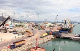 Sẽ thu hồi cổ phần bán sai tại cảng Quy Nhơn