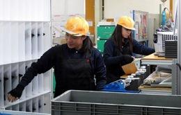 Nhiều lao động nước ngoài ở Nhật bỏ trốn vì lương thấp
