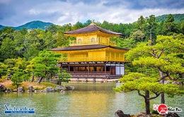 """Ngắm cảnh quan """"siêu thực"""" ở Nhật Bản"""