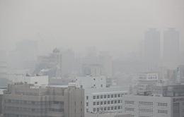 Hàn Quốc áp dụng các biện pháp khẩn cấp nhằm giảm thiểu bụi mịn