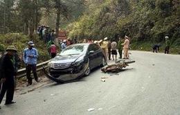 Ủy ban ATGT Quốc gia yêu cầu kiểm tra vụ tai nạn giao thông tại Sa Pa