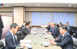 Đoàn Tòa án Nhân dân Tối cao thăm và làm việc tại Nhật Bản