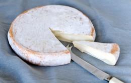 Cảnh báo về sản phẩm phomat nhập khẩu từ Pháp bị nhiễm E.coli