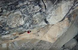 VTVcab chia sẻ những câu chuyện kỳ diệu trong chùm phim tài liệu của National Geographic