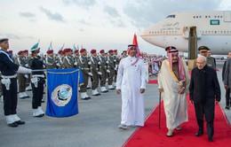 Liên đoàn Arab ra tuyên bố chung về Cao nguyên Golan