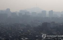 Hàn Quốc thành lập Ban Chỉ đạo ứng phó bụi mịn