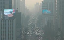 Mật độ bụi siêu mịn ở Seoul, Hàn Quốc chạm ngưỡng kỷ lục