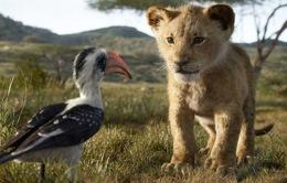 """Tung trailer mới, """"Vua sư tử"""" 2019 gây sốt với các nhân vật giống thật đến ngỡ ngàng"""