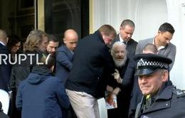 Anh bắt giữ nhà sáng lập WikiLeaks