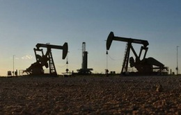 Goldman Sachs: Giá dầu khó vượt ngưỡng 80 USD/thùng