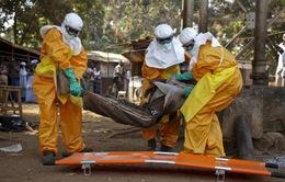Hội Chữ Thập Đỏ cảnh báo dịch Ebola lây lan nhanh tại CHDC Congo