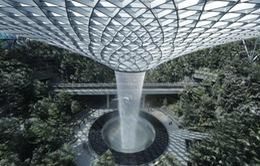 Thác nước trong nhà cao nhất thế giới tại Singapore