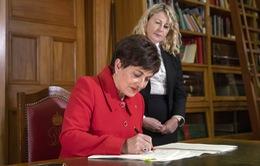 Luật mới về kiểm soát súng đạn chính thức có hiệu lực tại New Zealand