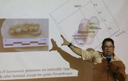 Tìm thấy dấu vết lớp người cổ mới trong hang động Philippines