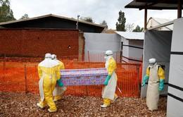 Hơn 750 người tử vong vì dịch Ebola tại Congo