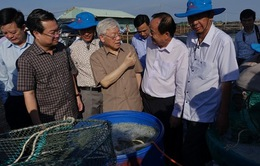Tổng Bí thư, Chủ tịch nước thăm một số doanh nghiệp tại tỉnh Kiên Giang