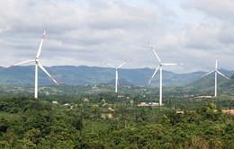 Bạc Liêu khởi công dự án điện gió hơn 100 triệu USD
