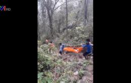 Giải cứu 2 thanh niên bị ong đốt trên núi Bà Đen