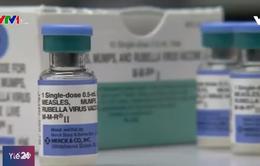 Số ca nhiễm sởi trên toàn thế giới tăng 300% so với cùng kỳ