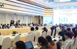 Thương hiệu quốc gia Việt Nam được định giá 235 tỷ USD