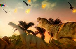 Sao băng khiến khủng long tuyệt chủng