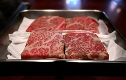 Mang thịt chế biến vào Nhật Bản có thể bị phạt tù 3 năm