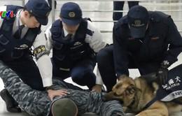 Nhật Bản diễn tập chống khủng bố