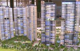 Thị trường căn hộ tại TP.HCM sụt giảm mạnh nhất trong 5 năm qua