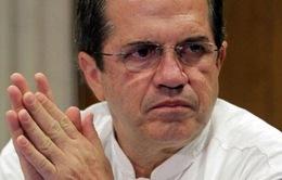 Truy nã cựu Ngoại trưởng Ecuador vì dính líu với WikiLeaks