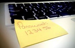 """""""Điếc không sợ súng"""", hàng triệu người vẫn dùng mật khẩu """"123456"""""""