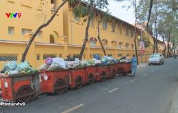 TP. Cần Thơ: Khu tưởng niệm, trường học thành nơi tập kết rác