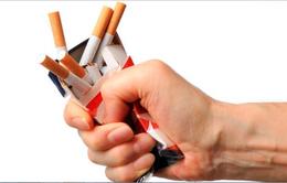 Hít hà socola giúp giảm cảm giác thèm thuốc lá