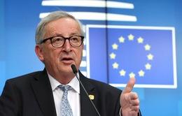EU cam kết chống tin giả trước thềm bầu cử