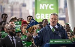 New York (Mỹ) cấm xây mới các tòa nhà chọc trời ốp kính