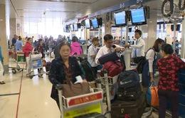 Mở tour bay thẳng từ Đà Lạt đến Jeju