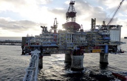 Giá dầu tại New York biến động mạnh sau thông báo chấm dứt miễn trừ cấm vận