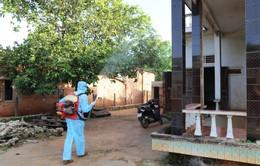 Đắk Lắk: Bệnh nhân mắc sốt rét gia tăng