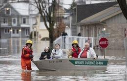Canada: Thêm một thành phố ban bố tình trạng khẩn cấp vì lũ lụt