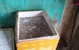 Thu giữ 300kg nội tạng động vật không rõ nguồn gốc