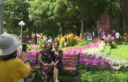 Lễ hội hoa lan tại TP.HCM