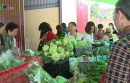 Nông nghiệp hữu cơ giúp bảo vệ môi trường