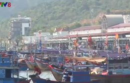 Ngư dân lo lắng về quy định quản lý tàu cá mới