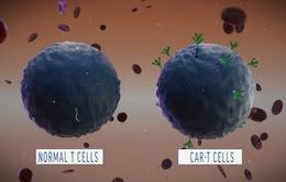 Liệu pháp CAR-T giúp phát hiện sớm các khối u ung thư