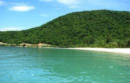 Quảng Nam lo ngại việc Đà Nẵng đưa khách từ sông Hàn ra thẳng Cù Lao Chàm
