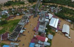 Indonesia: Mưa lũ khiến hàng chục người thương vong
