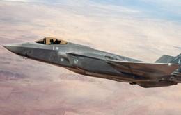 Mỹ phủ nhận thông tin Nhật Bản tìm được xác máy bay F-35 gặp nạn