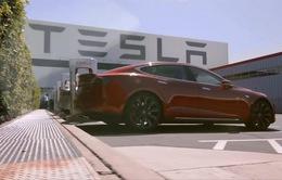 Tesla: Lượng xe chuyển giao cho khách hàng giảm